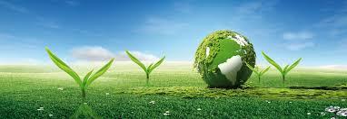 بر اتخاذ سیاست های پیشگیرانه در حفاظت از محیط زیست تاکید داریم