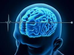 احکام حقوقی مرتبط با مرگ مغزی